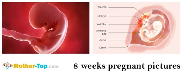 8 weeks pregnant pictures