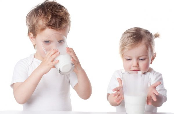 Dairy products for babies under 12 months