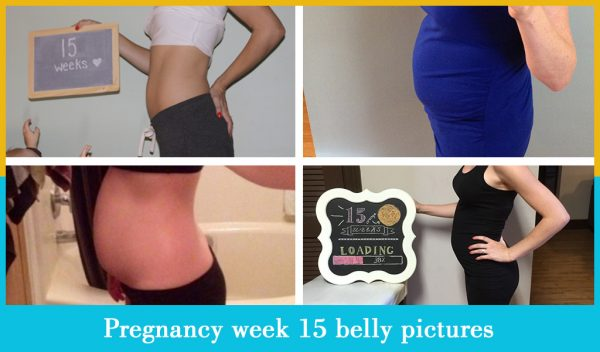 pregnancy week 15 belly pictures