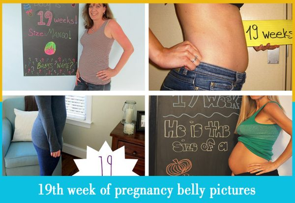 19th week of pregnancy belly pictures