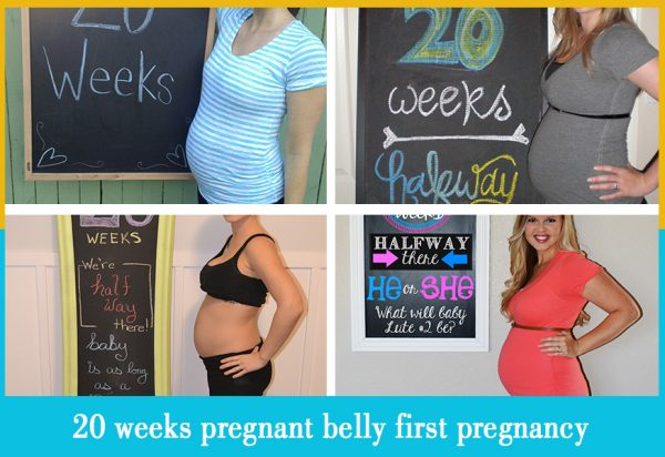 20 weeks pregnant belly first pregnancy