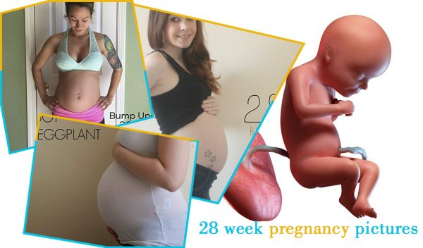 28 week pregnancy pictures