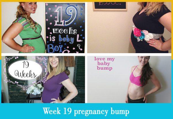 week 19 pregnancy bump